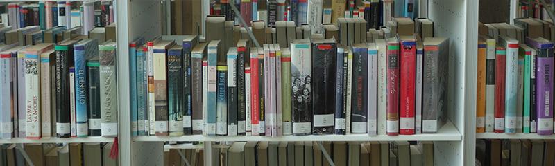 seleccion_bibliografica_mapa_literario_vigo_bibblioteca_neira_vilas_2